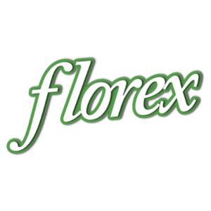Florex, Facilitador IT